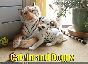 Calvin and Doggz