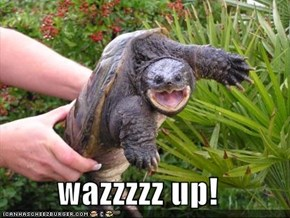 wazzzzz up!