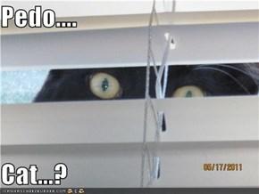 Pedo....  Cat...?