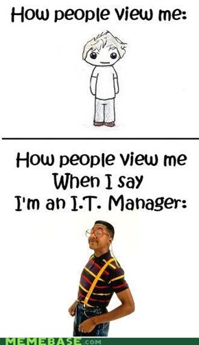 How People View Me as an I.T. Manager