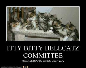 ITTY BITTY HELLCATZ COMMITTEE