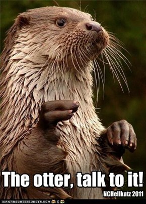 The otter, talk to it!