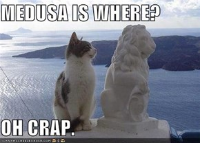MEDUSA IS WHERE?  OH CRAP.