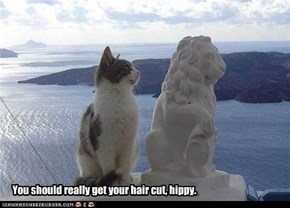You should really get your hair cut, hippy.