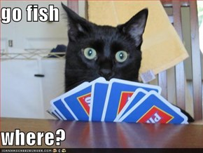 go fish   where?