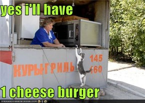 yes i'll have  1 cheese burger