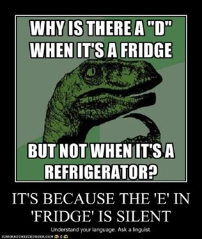 IT'S BECAUSE THE 'E' IN 'FRIDGE' IS SILENT