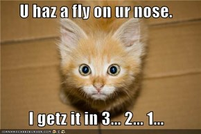 U haz a fly on ur nose.  I getz it in 3... 2... 1...