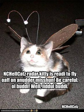 NCHellCatz radar kitty is readi to fly oaff on anudder misshun! Be careful, ol buddi! Well, liddul buddi.