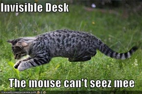 Invisible Desk  The mouse can't seez mee