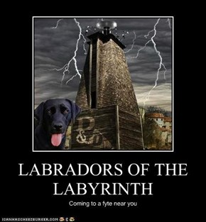 LABRADORS OF THE LABYRINTH