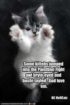 Some kittehs jumped into the Paintblol Fight awl bryte-eyed and bushi-tayled...God love 'em.