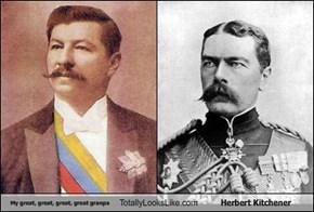 My great, great, great, great granpa Totally Looks Like Herbert Kitchener