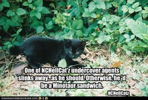 One of NCHellCat'z undercover agents slinks away...as he should. Otherwise, he 'd be a Minotaur sandwich.