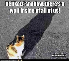 Hellkatz' shadow, there's a wolf inside of all of us!