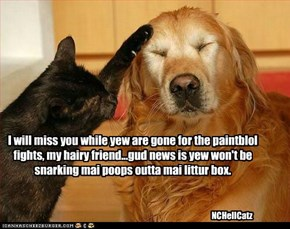I will miss you while yew are gone for the paintblol fights, my hairy friend...gud news is yew won't be snarking mai poops outta mai littur box.