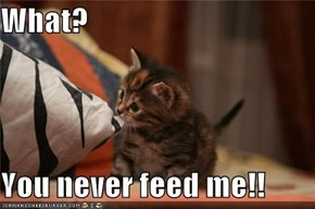 What?  You never feed me!!