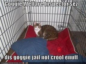Goggie Welfare Inspector sez  dis goggie jail not crool enuff
