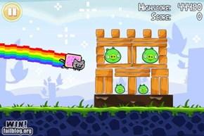 Nyan Cat + Angry Birds = EPIC WIN