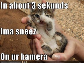 In about 3 sekunds Ima sneez On ur kamera