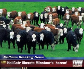 Methane Breaking News - HellCatz liberate Minotaur's  harem!