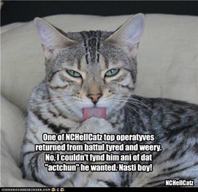 "One of NCHellCatz top operatyves returned from battul tyred and weery. No, I couldn't fynd him ani of dat ""actchun"" he wanted. Nasti boy!"