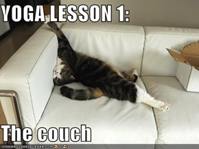 YOGA LESSON 1:  The couch