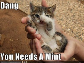 Dang  You Needs A Mint