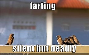 farting         silent but deadly