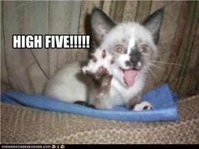 HIGH FIVE!!!!!