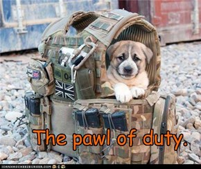 The pawl of duty.
