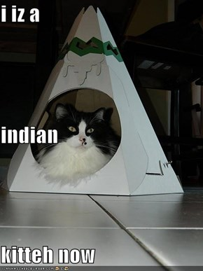 i iz a  indian  kitteh now
