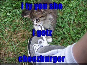 i ty you sho i getz cheezburger