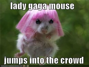 lady gaga mouse  jumps into the crowd