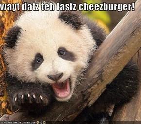 wayt datz teh lastz cheezburger!