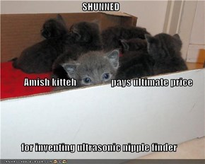 SHUNNED Amish kitteh pays ultimate price for inventing ultrasonic nipple finder
