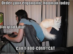 Order your ergonomic hooman today I'm glad I did! Call 1-800-COMFYCAT
