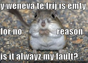 y weneva te frij is emty for no                    reason  is it alwayz my fault?