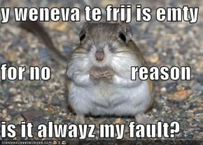 y weneva te frij is emty for no                    reason  is it alwayz my fault?