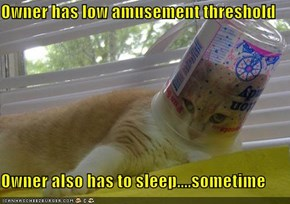Owner has low amusement threshold  Owner also has to sleep....sometime