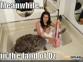 Meanwhile...  in the land of Oz