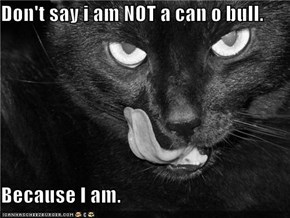 Don't say i am NOT a can o bull.  Because I am.