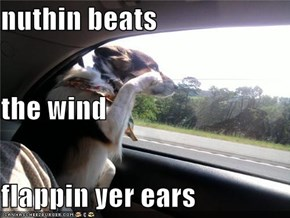 nuthin beats the wind flappin yer ears