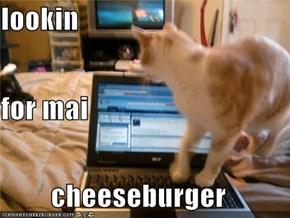 lookin for mai cheeseburger