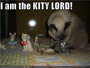 I am the KITY LORD!