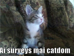 Ai surveys mai catdom
