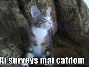 Ai surveys mai catdom