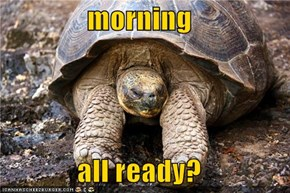 morning  all ready?