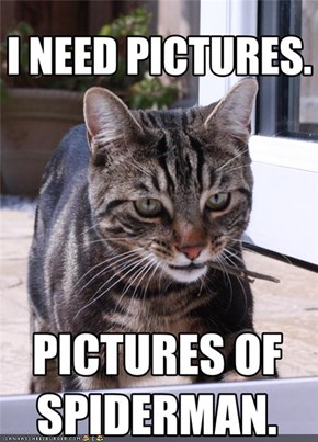 I NEED PICTURES.