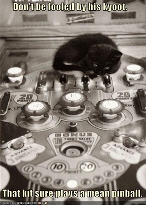 Don't be fooled by his kyoot.     That kit sure plays a mean pinball.